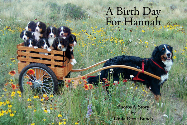 A Birth Day for Hannah